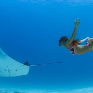Maldives Honeymoon Packages Emerald Resort & Spa Diving With Marine Life