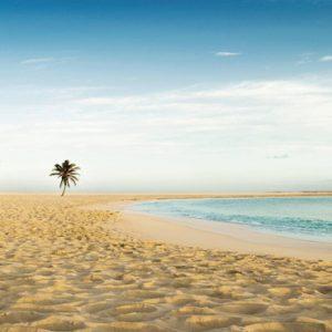 The Cove Beach1 The Cove At Atlantis Bahamas Honeymoons