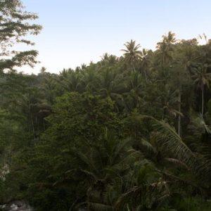 Bali Honeymoon Packages Kayumanis Ubud Bride