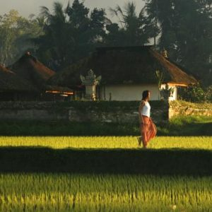 Bali Honeymoon Packages Kayumanis Ubud Exploring Rice Paddies