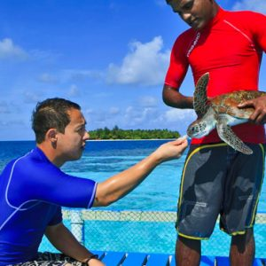 Maldives Honeymoon Packages Banyan Tree Vabbinfaru Water Activites