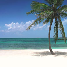 honeymoons in Caribbean