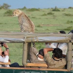 Mara-Intrepids-safari