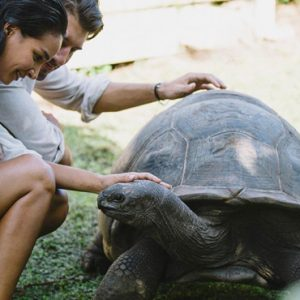 Seychelles Honeymoon Packages Raffles Seychelles Wild Life