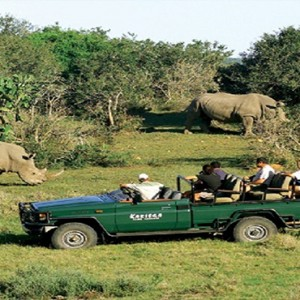 Kariega Game Reserve - Luxury South Africa Honeymoon Packages - Game drive viewing rhino
