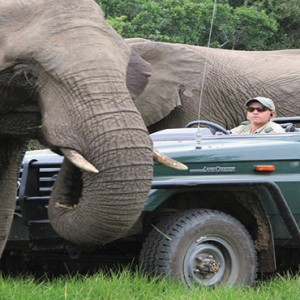 Kariega Game Reserve - Luxury South Africa Honeymoon Packages - Safari