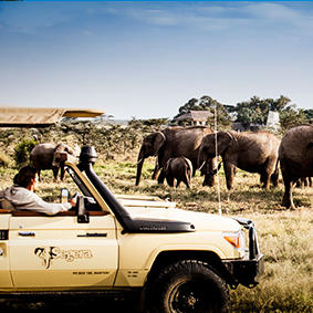 Segera Retreat - Kenya safari honeymoon - thumbnail