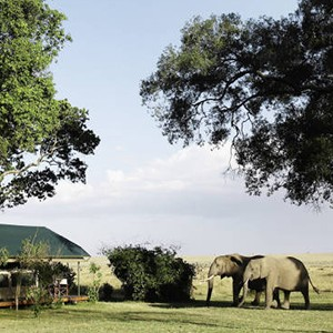 Governors Main Campt - Kenya Honeymoon Packages - camp