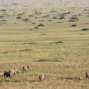 South Africa Honeymoon Packages Governors Camp, Kenya Views Of Masai Mara From Above
