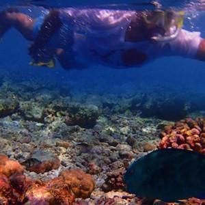 Maldives Honeymoon Packages Biyadhoo Island Snorkelling