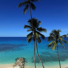 saint peter's bay - barbados honeymoon packages - thumbnail