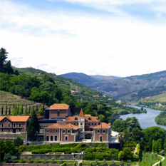 six senses douro velley - luxury portugal honeymoons - thumbnail