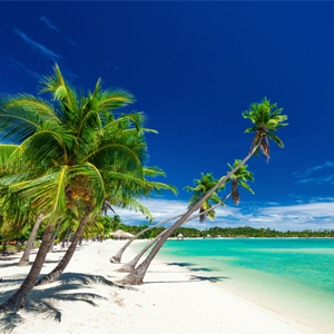 Fiji Honeymoon Packages When To Go On Honeymoon In Fiji
