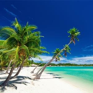 Fiji Honeymoon Packages When To Go On Honeymoon In Fiji