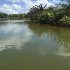 lake - Bubble Lodge Mauritius - Luxury Mauritius Honeymoon Packages