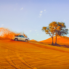 Dubai-desert-safari-with-barbeque---thumbnail-
