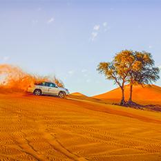 Dubai-desert-safari-with-barbeque---thumbnail-