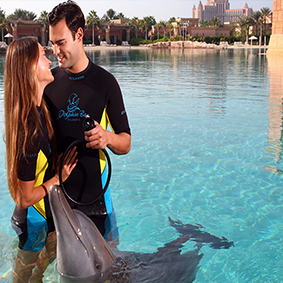 Thumbnail Atlantis Dolphin Encounter At Dolphin Bay Dubai Honeymoons