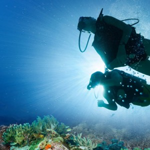 snorkelling-barbados