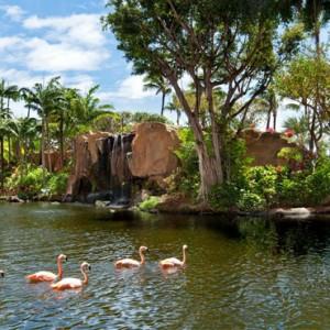 Hawaii Honeymoon Packages Westin Maui Resort And Spa Lagoon