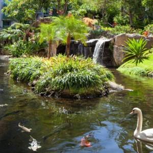 Hawaii Honeymoon Packages Westin Maui Resort And Spa Lagoon 2