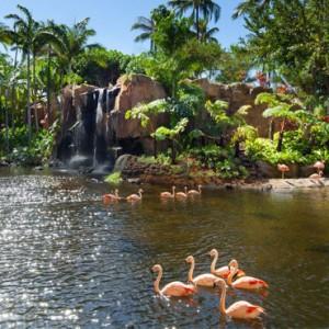 Hawaii Honeymoon Packages Westin Maui Resort And Spa Lagoon 4