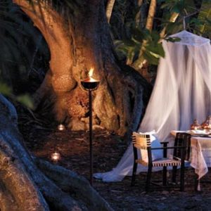 Maldives Honeymoon Packages Shangri La's Villingili Resort And Spa Jungle Dinner