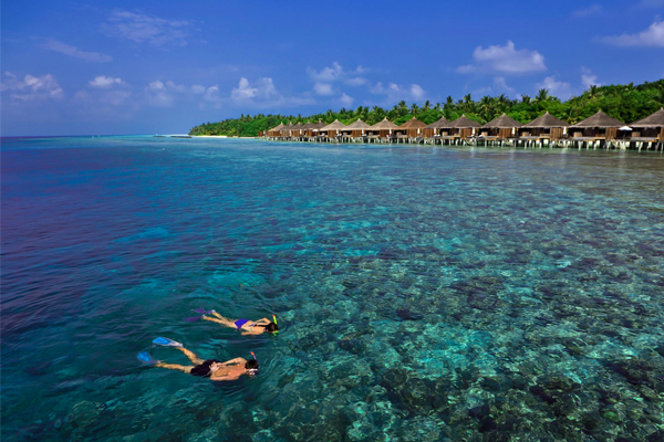 snorkeling - Sam and Michelle Takeaway wedding - the Honeymoon - Luxury Maldives Honeymoons