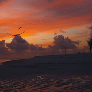 Sunset On The Beach Dhigufaru Island Resort Maldives Honeymoons