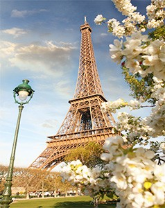 Citymoon - Honeymoon Dreams - Paris