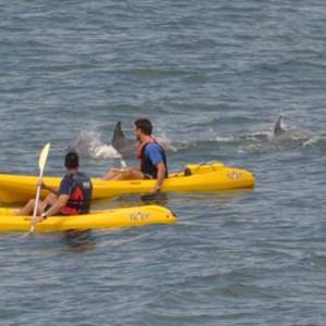 Kayak - the marine - honeymoon dreams