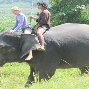 Thailand Honeymoon Packages The Sarojin Khao Lak Elephant Riding