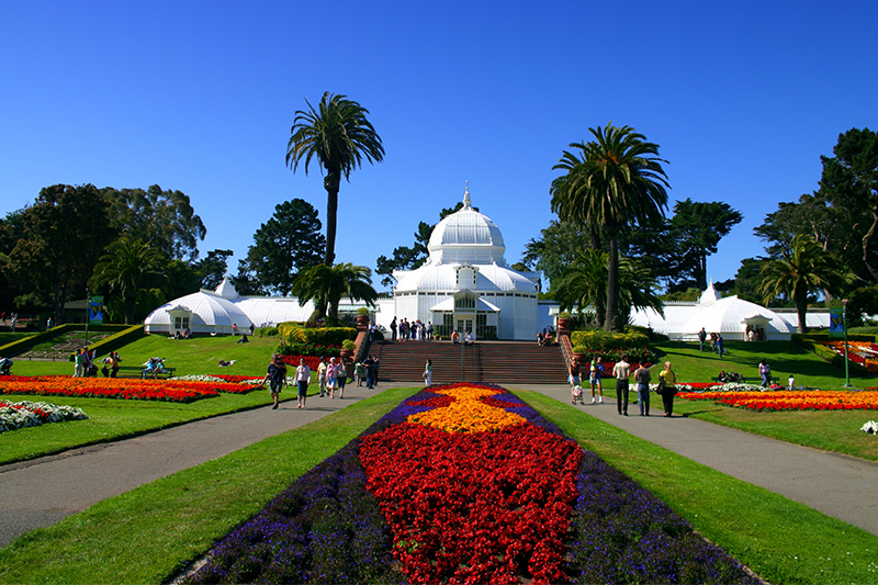 san-francisco-conservatory-of-flowers-blog1