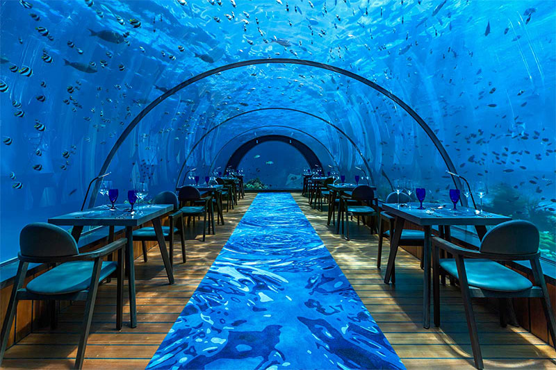 hurawalhi-undersea-restaurant-blog