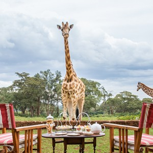 afternoon-tea-2-giraffe-manor-luxury-kenyan-honeymoon-packages