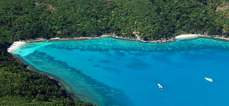 Hamilton Island December Packages