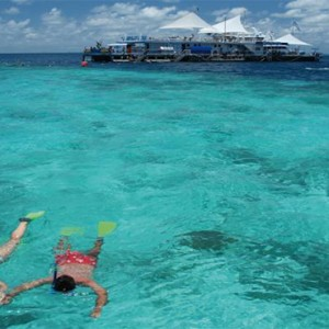 Beach Club Hamilton Islands - Australia Honeymoon Packages - snorkeling