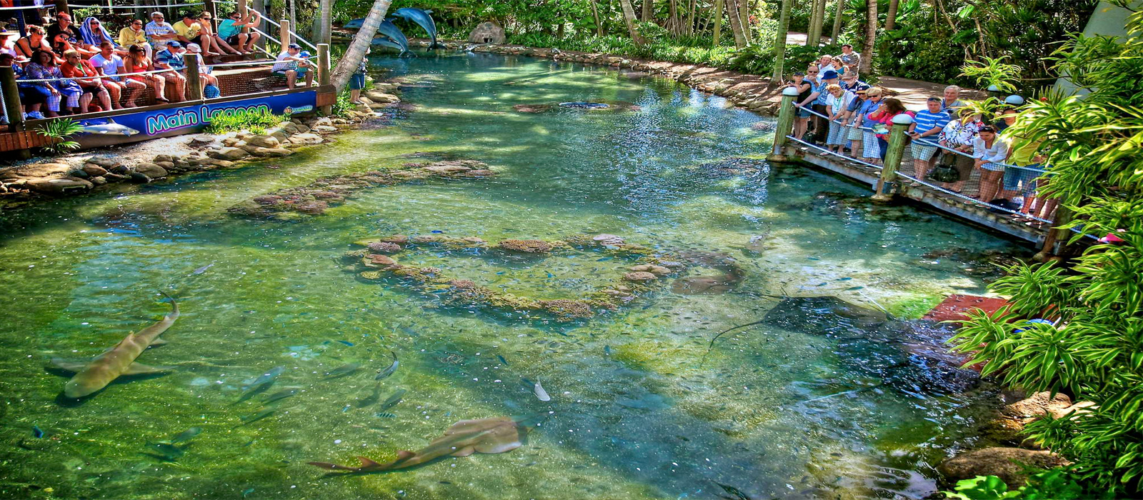 Daydream Island Resort Spa