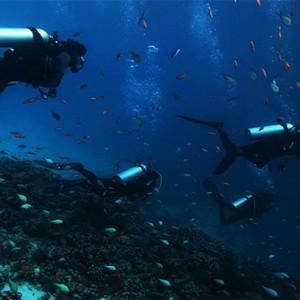 Gili Lankanfushi - Maldives Honeymoon Packages - diving