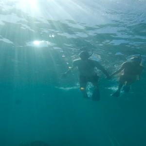 lizard-island-resort-australia-honeymoon-packages-snorkelling
