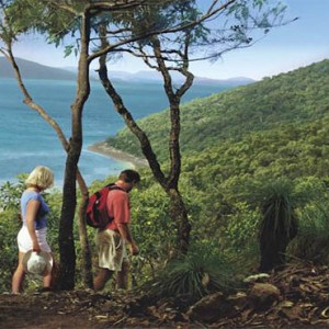 reef-view-hotel-australia-honeymoon-packages-walking-through-the-forest