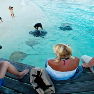 Reethi Beach Resort - Maldives Honeymoon Packages - Manta ray feeding
