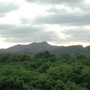 Heritance Kandalama - Sri Lanka Honeymoon Packages - Kandalama Rock