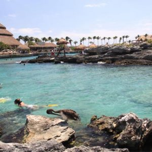Mexico Honeymoon Packages Dreams Sands Cancun Resort And Spa Snorkeling