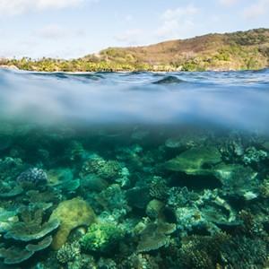 reef - Kokomo Island resort - Luxury Fiji honeymoons