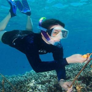 Four Seasons Resort Seychelles - Luxury Seychelles Honeymoon packages - marine education
