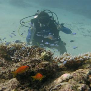Loama Resort Maldives at Maamigili - Luxury Maldives Honeymoon packages - scuba diving