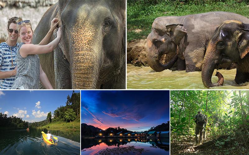 elephant hills blog - activities