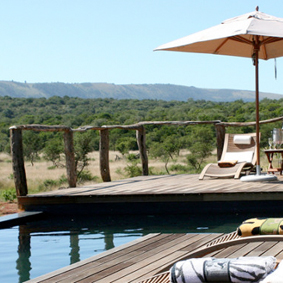 South Africa And Mauritius Multi Centre Honeymoon Packages Puba Private Game Reserve