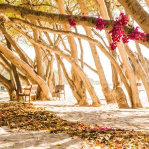 location - Four Seasons Punta Mita - Luxury Mexico Holidays